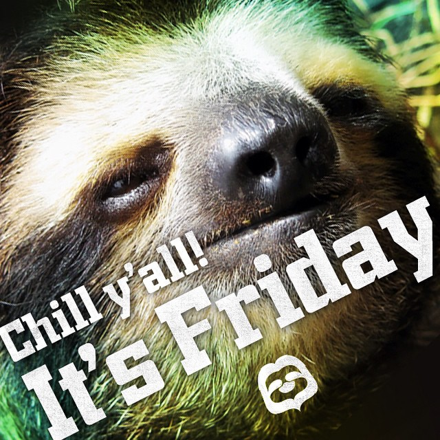It's Friday!! And the last day to save some cash with our #BacktoSchool sale! #saverainforest #slothlife