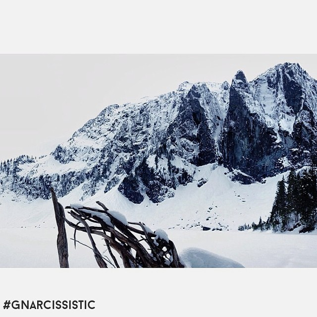 @hernamefreedom has been sharing her landscapes with us lately. Check out the daily insta and the portfolio at staceymcclure.com. #GNARCISSISTIC #photography #freedom  Place: Central Cascades