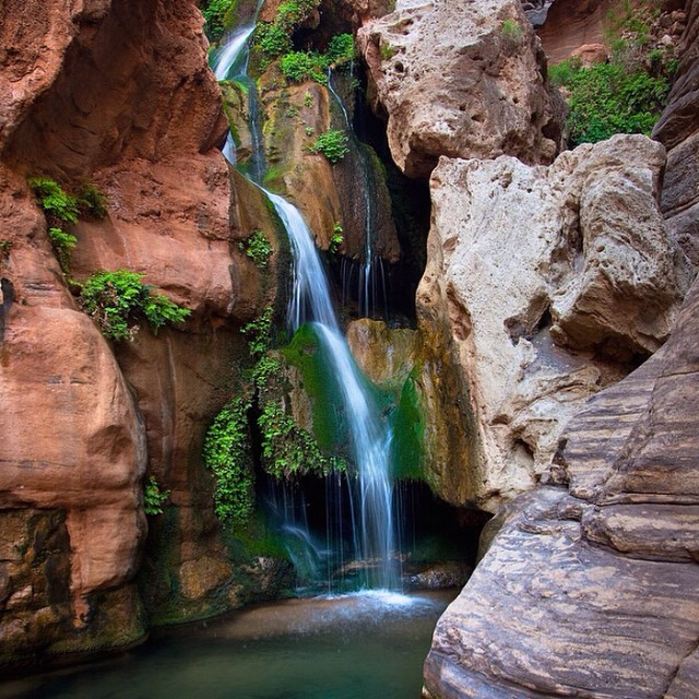 Elves Chasm, an extraordinary spot, deep inside the Grand Canyon, only accessible from the river. You can dive from platforms into the pools. Check out our Pinterest account for  more amazing scenery and adventure ideas! #swimminghole #grandcanyon...