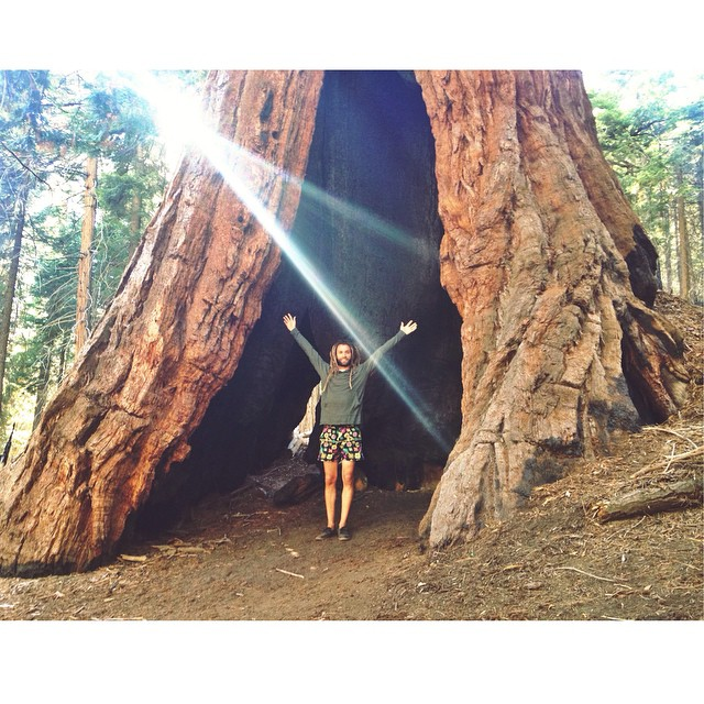 Be Kind Tribe Ambassador @to_the_sea8 amongst the giants in our hemp/organic cotton light weight hoodie