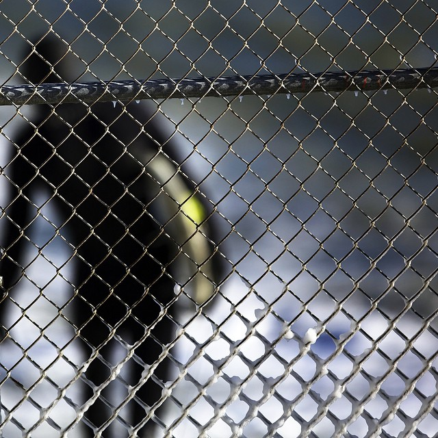 Coming soon. #coldwatersurf #snow #winter #waves