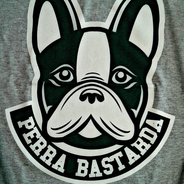 El nuevo cachorro del equipo.  #frenchie #frenchbulldog #perrabastarda