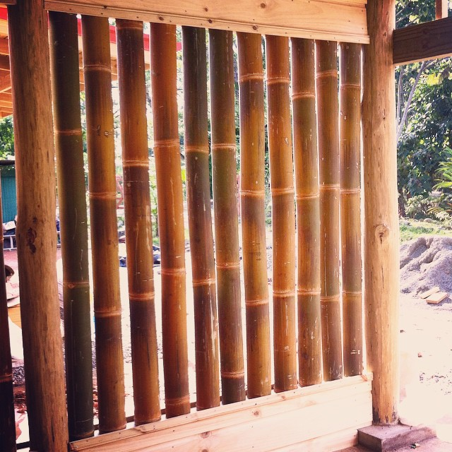 Every day the new Bodhi lodging gets closer to being done. Today was the day that our bamboo wall went up, and we are in ❤️!