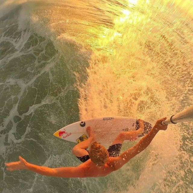 @whoisjob from above. Backdoor. || #nectarlife #doepicshit #thesweetlife