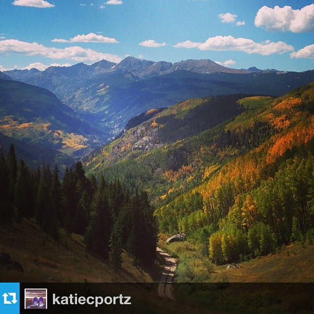 Sharing this #FirstDayOfFall gram from @katiecportz - the aspens are lighting up the #VailValley #winteriscoming #fall #thegreatoutdoors #golden #leaves #regram #repost #fall #nature