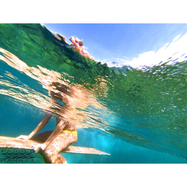 Radiant buoyantly  Powered by #NavitasNaturals #thesuperfoodcompany and #itakebioastin #HawaiianAstaxanthin #paddlehawaii #alaia #hollowsurfboard #woodisgood #gopro #wiseguides