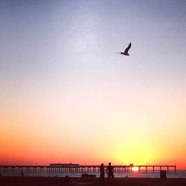 Take a moment and enjoy what's around you! - #oceanbeach #sunset