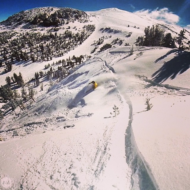 Eric ripping hemlocks!!! Mammo in the background. Less than 50 days! #prayforsnow #tbt #mammothstories #GNARCISSISTIC