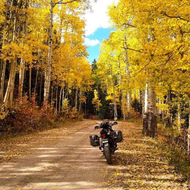 One of our customers pics... Escaping for the weekend.  #ride #hard #relax #happy #Pakems #PakemsInAction #Colorado #fall #aspentrees