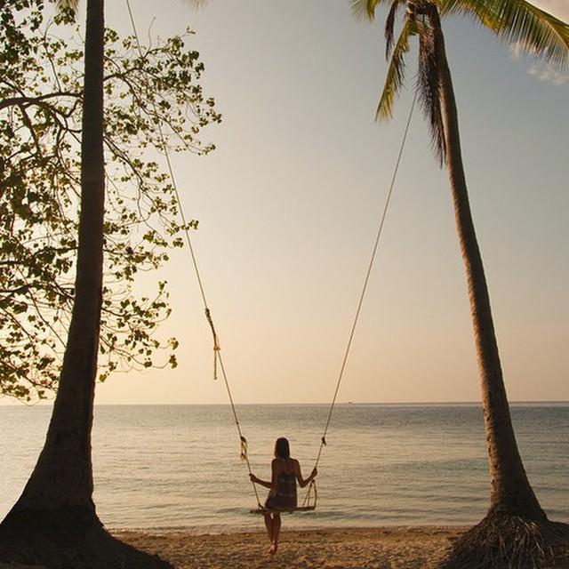 We're on island time. ||#nectarshades #thesweetlife #enjoymore