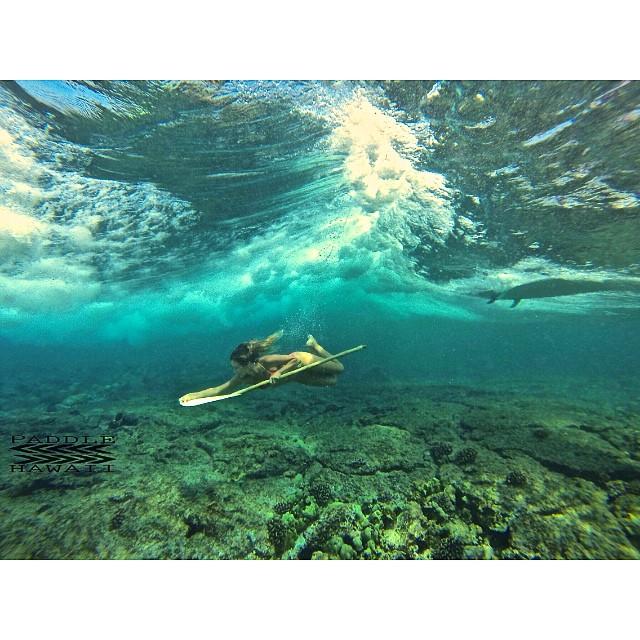 Heat of the moment. @swellliving duckdiving in @odinasurf with a #paddlehawaii #bamboopaddle #wavesNwisdom @isurfiyoga @sangaretreats #itakebioastin #imaginesurf #navitasnaturals #wiseguides #lifeinhifi