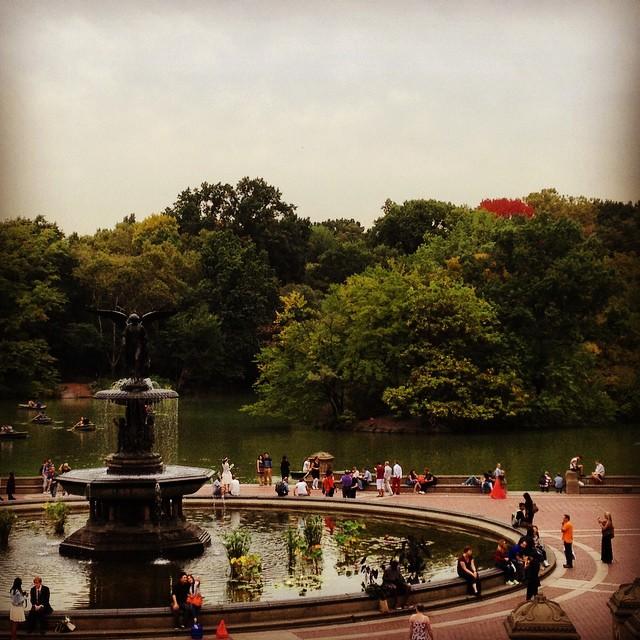 I see Fall! #newyorkcity #nyc #winteriscoming #fall #centralpark