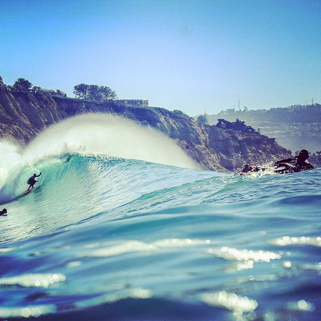 Love San Diego #lovematuse
