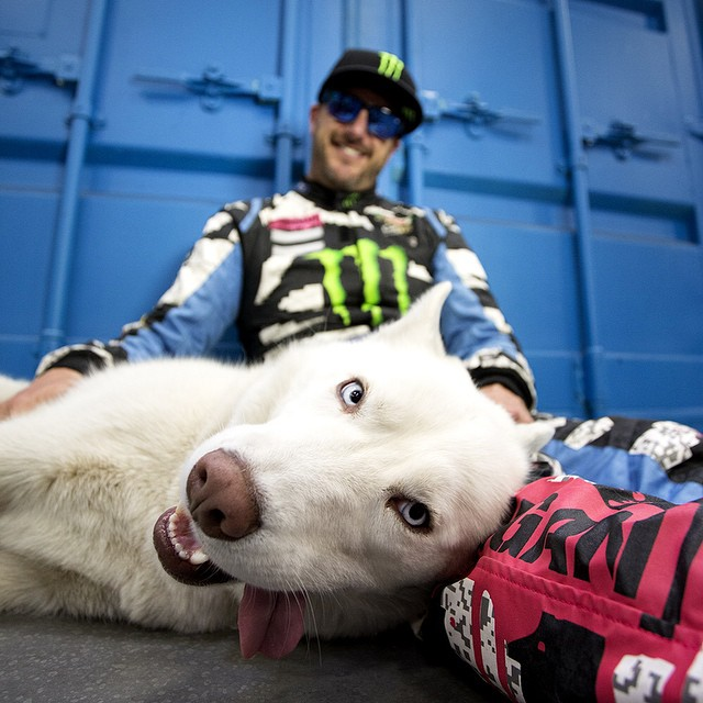 Let it all hang out and #SEEHAPPY.  @kblock43 #HappyLens  #yukithedestroyer