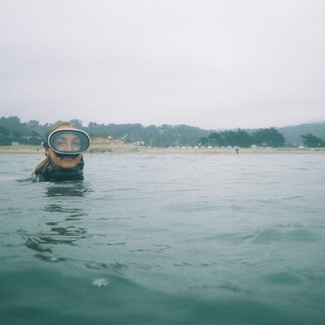 San Franciscan shark bait,