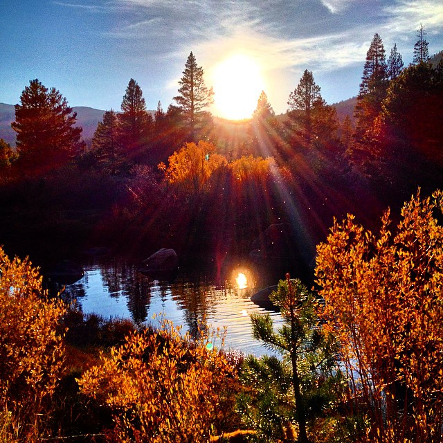 Hope Valley, CA - Fall colors in effect. 10.7.2014 #riseinspired #risedesigns #natureinspired