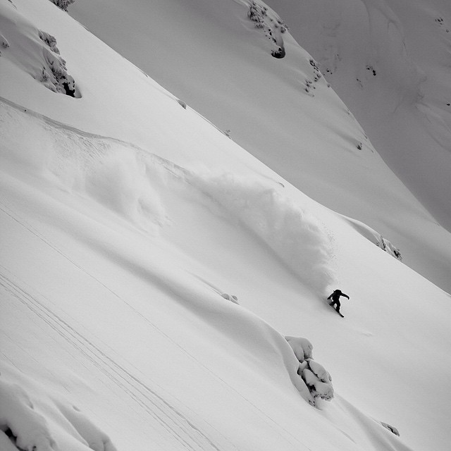 The @loadedsnow #algernon: coming to a powder run near you.  www.loadedsnow.com #loadedsnow