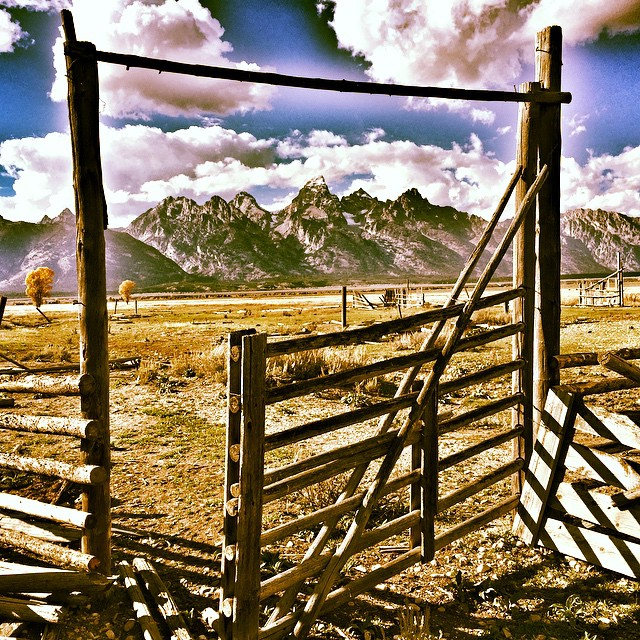 Howdy Partner, welcome to Give'r Country #jacksonhole #givercountry