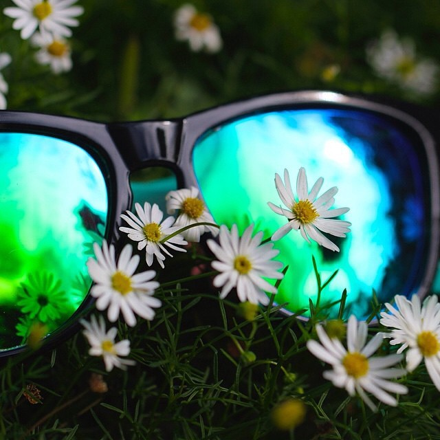 Bali Bliss | Sweet capture by @asurfergirl #Kameleonz #Bali #Sunglasses #utblogger #LifesABeach #EpicTravelSpots #ThisIsMyBeach #WheresYourBeach #FallFashion #Flowers #Reflection #Green #Blue