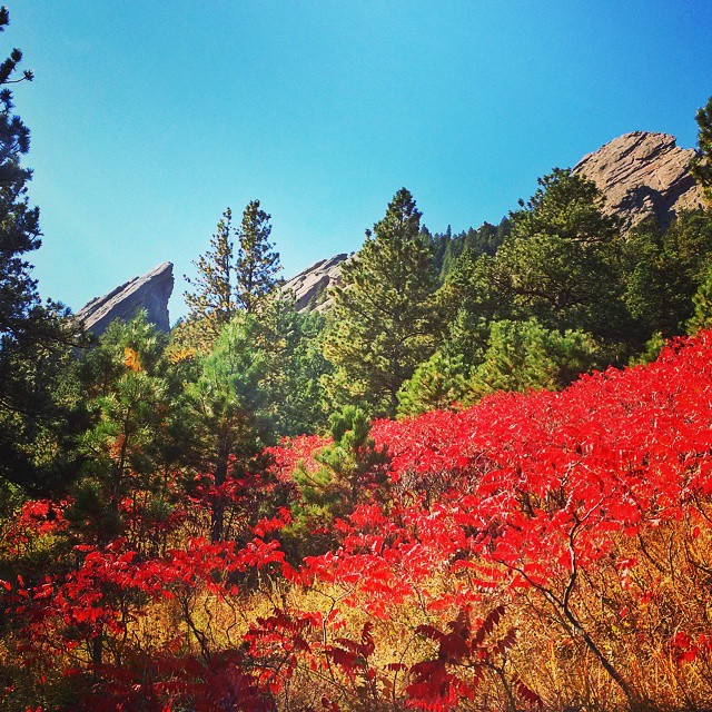 Fall hit the Flatirons. #winteriscoming