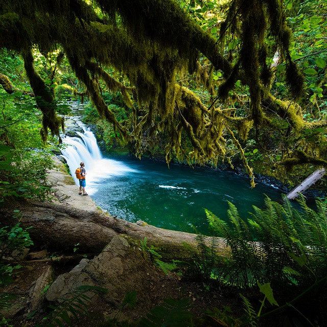 """We need the tonic of wildness.""- Henry David Thoreau #GetOutStayOut  Photo: @travisburkephotography"