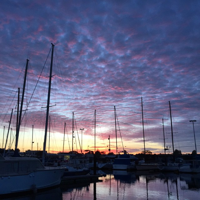 My view at the moment via @chrisbtanner @rosebettrys yacht - nice way to send them off on their sailing adventure #sunset #sunsetchaser #explore #wanderlust #sailing #wanderlust