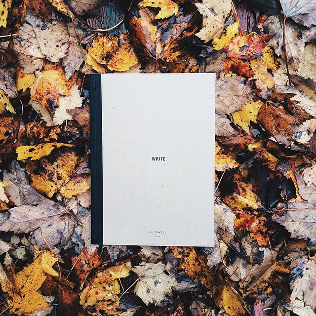 Splendor in the grass? How about AllSwell in the leaves. Getting autumnal with creative triple threat @johnlamos (writer, photographer and contributor to @provencialmag).
