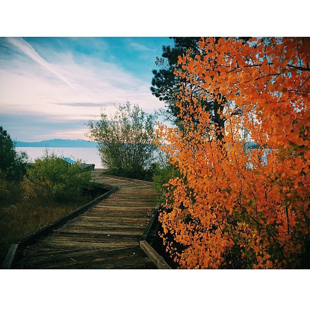 More #autumnvibes from the legendary @skiingrogge // #thisistahoe