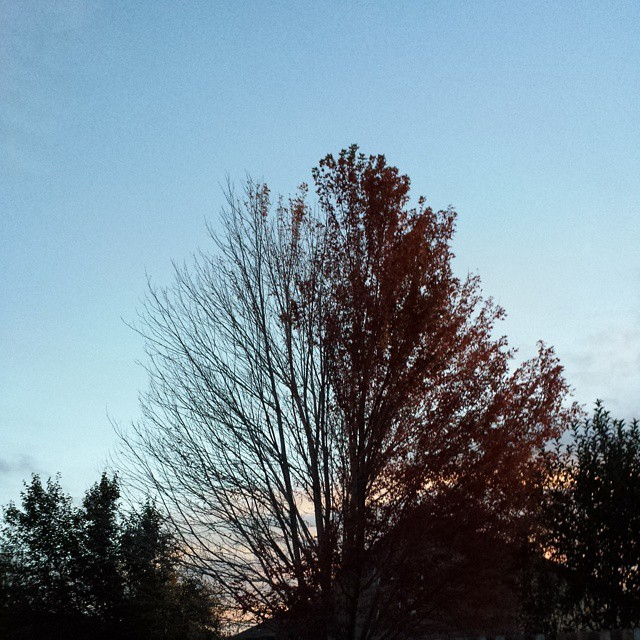 #halfnhalf #sunset #colorado