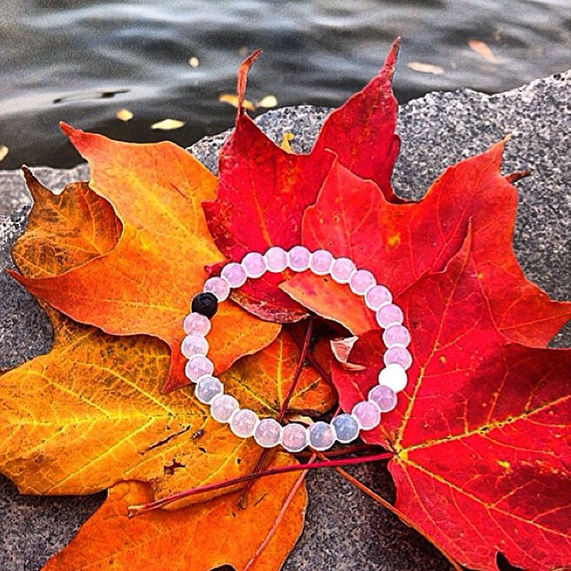 Fall, you've been good to us #livelokai  Thanks @rachxmarie