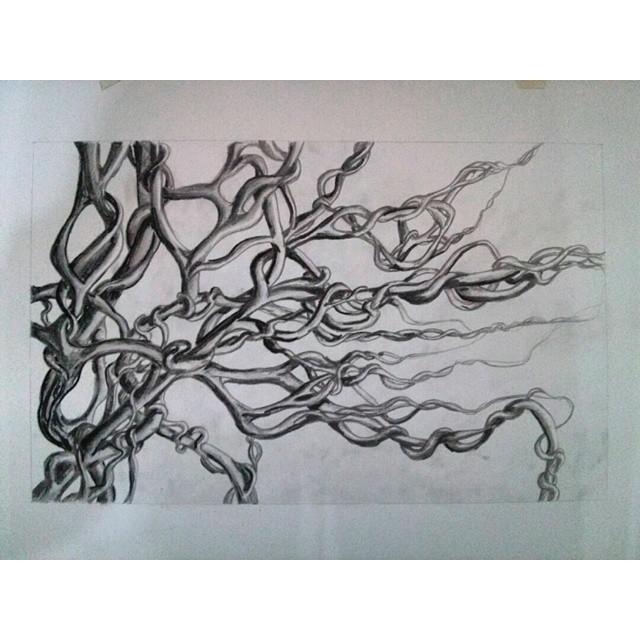 Buscando y encontrando. #raices #tierra #origen #dibujo #draw #drawing #arte #art #instaart