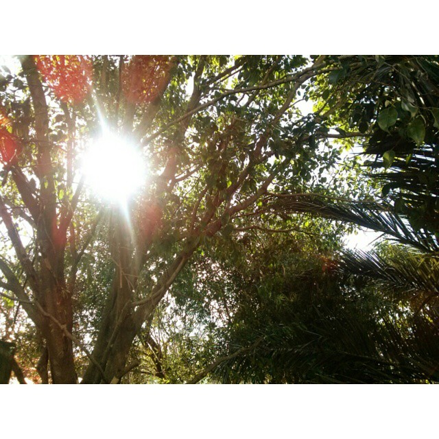 Mates + historia + solcito, me encanta. #september #at #home #sun #winter #instamoment #nature