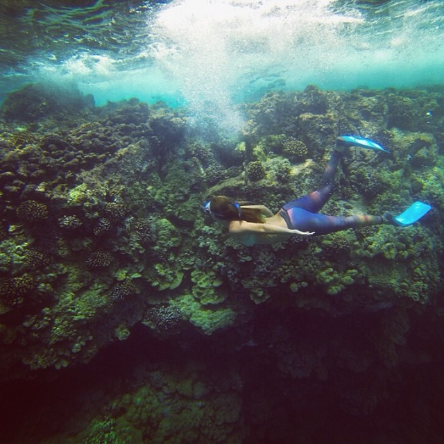 @alisonsadventures cruising the reef. @teekigram #underthesea #sarahleephoto taken on a #GoPro.