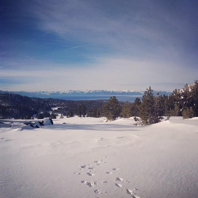 #prayforsnow #laketahoe #sierramountains #snow #readyforwinter #snowboard