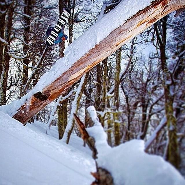 #regram Jack Hessler @jah_he planting it up-side-down. Bring in the winter already... ❄️