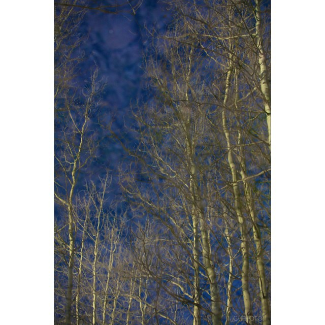 It's amazing what the right conditions will provide. Here's a shot from a series I have called reflections. I know cheesy name but what else could I call it? This was the reflection in a creek I came accross in #jacksonhole If you look closely you can...