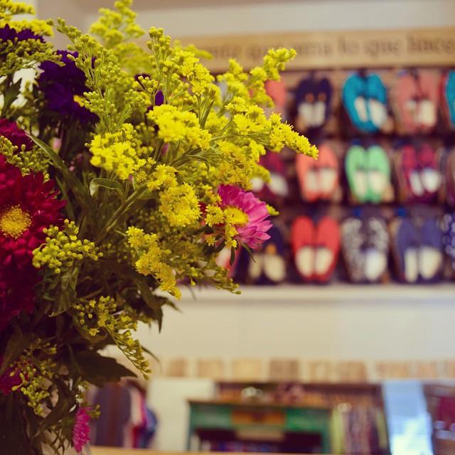 Nos florece la Actitud. #QA #Showroom #QuiénSabedeActitud www.QA.com.ar
