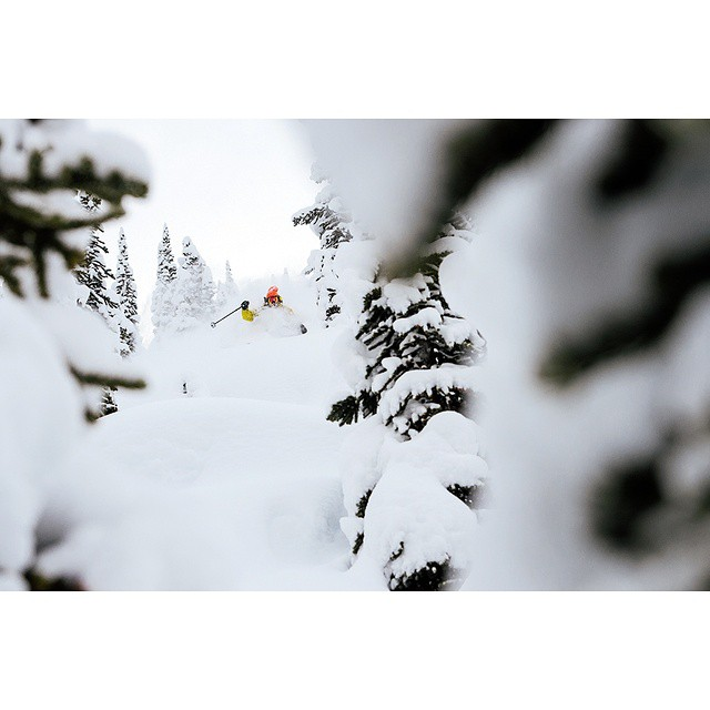 The man needs no introduction. (He's nominated for best line and best photo in this year's @powdermag awards so you should definitely know him) @eric_hjorleifson pops pillows and slays pow. @theskijournal slays that editorial game. Check out #Hoji's...