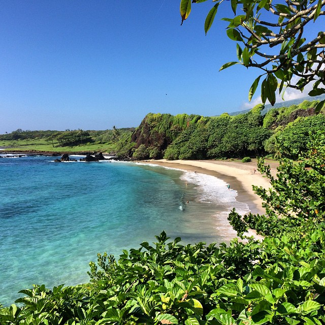Heaven on earth! Another beautiful view of Hana. #whitesandbeach #loveinmaui @joshdaiek #goodtimes hope to come home to some epic snow cause I am off to Mexico in the am to celebrate the Daiek anniversary and @pocklesb 's birthday! Hope my liver can...