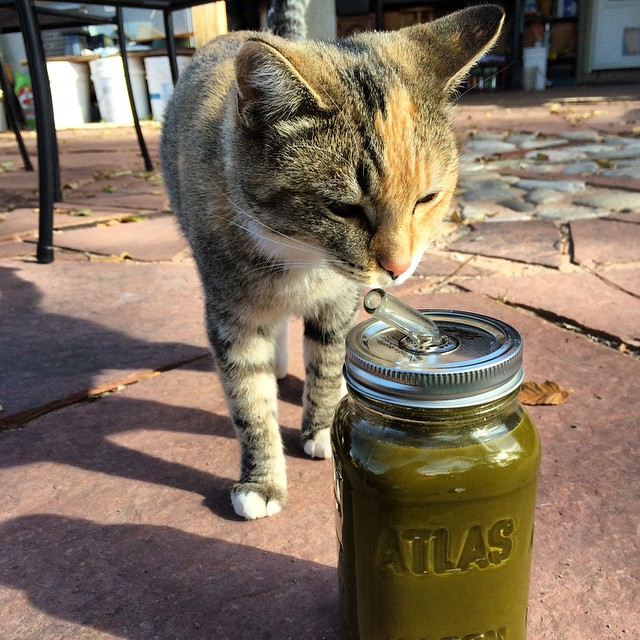 Mmm...fresh juice. #meangreen