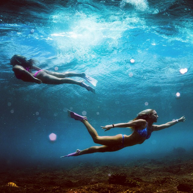 Under the sea with @alisonsadventures & @amy_kotch ... In their matching pink daFins • @odinasurf #dafin #sarahleephoto #maldives