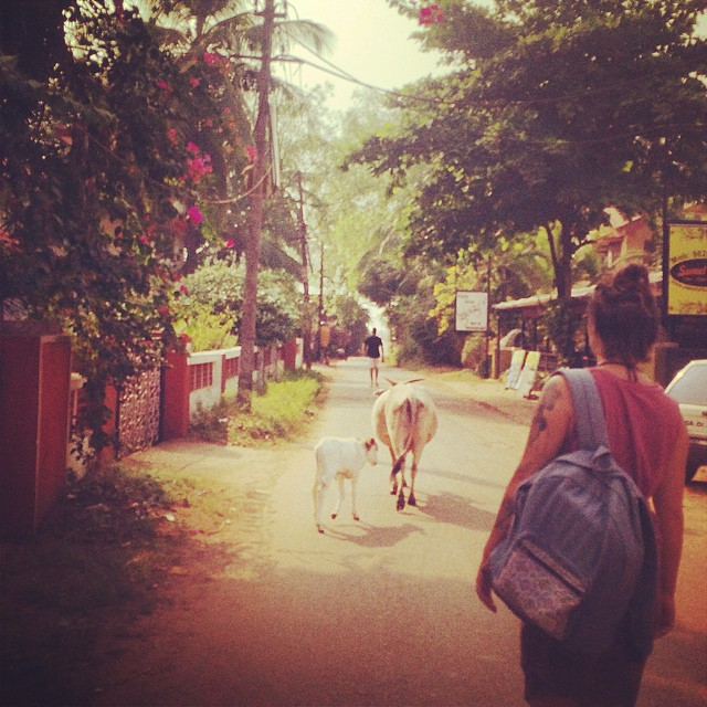 A day in an Indian beach town. #goa #india #organic #gooddaypack #connectglobally #estwst