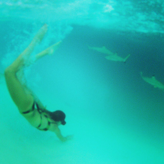 Our ambassadors continue to amaze us!  @babeinthewaves swimming with sharks. It's Friday!  #getoutthere #miolainthewild #swimingwithsharks #bikini #surfer #surfergirl