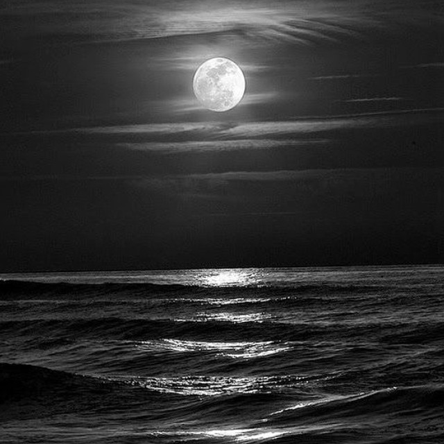 """""""Here I came to the very edge where nothing at all needs saying, everything is absorbed through weather and the sea, and the moon swam back, its rays all silvered, and time and again the darkness would be broken by the crash of a wave, and every day on..."""
