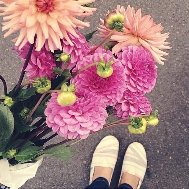 Flowerpower from #Paez store #Colombia @paezbucaramanga. #Paezshoes #picoftheday