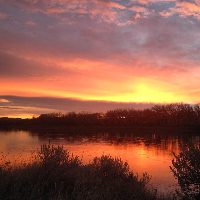 "And for our final day of official thankfulness, our Partnerships Coordinator Erin Johnson says, ""I'm definitely thankful for sunrises! Also for my co-workers and all the wonderful people I've met through ASC."" Erin took this pretty photo while scouting..."