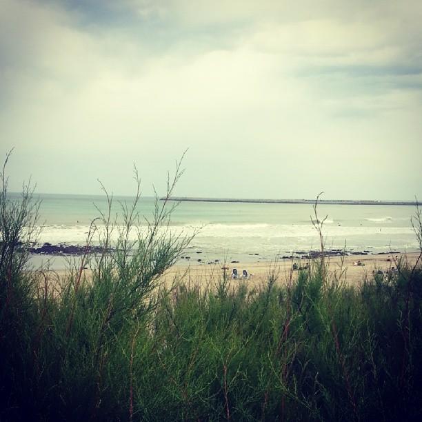 En Quequen y en Hawaii las olas se hacen esperar. Otro dia sin #ReefHawaiianPro veremos si mañana se retoma el campenato de la #VTCS chequeálo a partir de las 14:30 en vanstriplecrownofsurfing.com