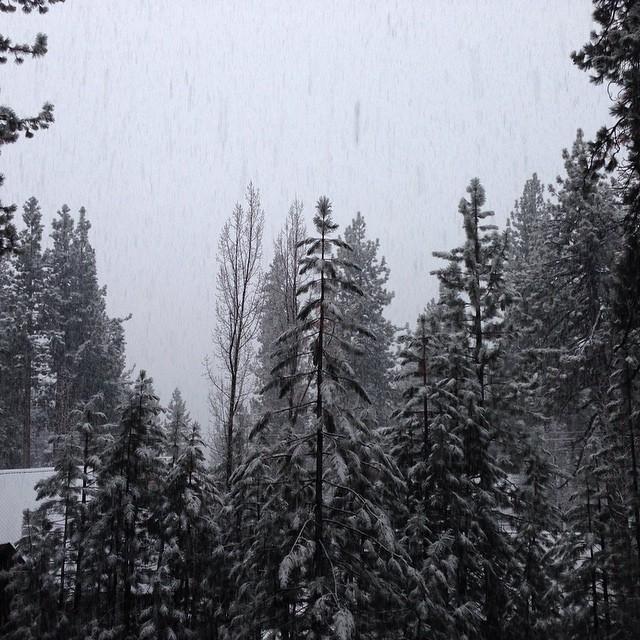 Black & White #nofilter #ilovesnow #tahoe #snow