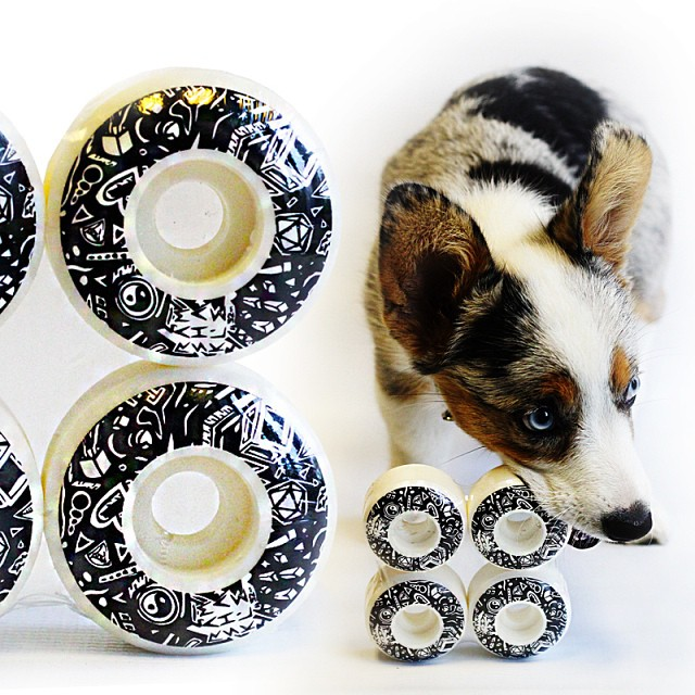 We now have this 4 pack of puppy chew toys available. As an added bonus these things double as wheels! How you wanna use them is up to you!