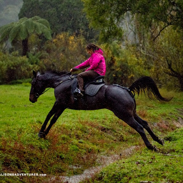 Last time it rained this hard I was taken off guard while crossing the New Zealand countryside by horse. When was the last time you were caught off guard?  Thanks to @hisarahlee for capturing this